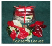 Poinsettia Petals